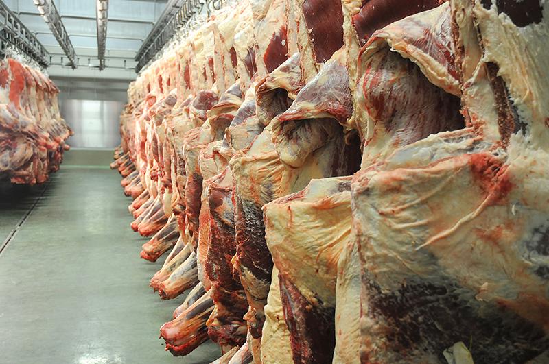 sirovo-meso-podnaslovna